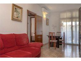 Petit appartement de vente à calle Prim, El Besòs i el Maresme à Barcelona - 408299938