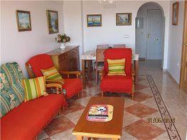 Piso en alquiler en paseo Maritimo Levante, Torre del mar - 391487012