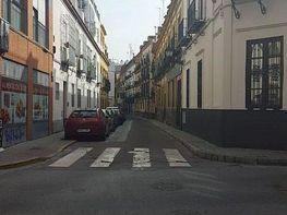 Foto - Piso en venta en calle Carmonapuerta Osarioamador de L, San Roque en Sevilla - 396338519