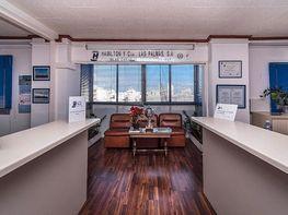 Oficinas desde 150m2 en alquiler en palmas de gran canaria for Oficina de correos las palmas de gran canaria