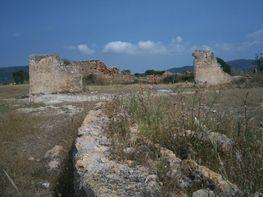 Propriété rustique de vente à carretera Cami de Vilarodona, Pla de Santa Maria, el - 122987437