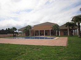 Finca rústica en venda calle Camino Vell de Gandia, Dénia - 383649894