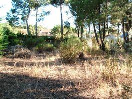 Grundstück in verkauf in calle Pontevedra, Cadalso de los Vidrios - 155012933