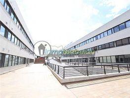 Oficina en alquiler en El Pinar-Punta Galea en Rozas de Madrid (Las) - 397938708