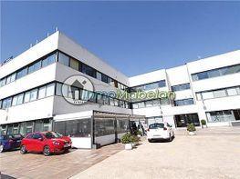 Oficina en alquiler en El Pinar-Punta Galea en Rozas de Madrid (Las) - 399667289