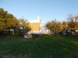 Xalet en venda calle , Bormujos - 346059022