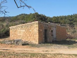 Rural property for sale in calle Avda Cataluña, Bot - 72795356