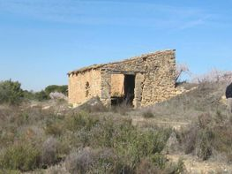 Rural property for sale in calle Cataluña, Batea - 72919490