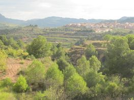 Rural property for sale in calle Avda Cataluña, Bot - 73129723
