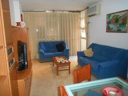 Salón - Piso en venta en calle Dr Combelles, Universitat en Lleida - 322532090