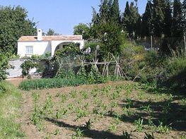 Casa rural en venta en calle León, campo mijas en Mijas