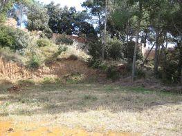Terreny en venda Venta-Can Musarro (La) a Piera - 175377933