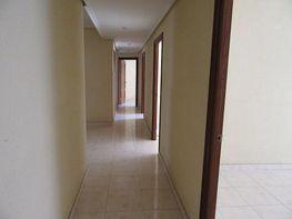 Oficina en alquiler en Centro histórico en Málaga - 355436025