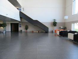 Local comercial en alquiler en El Cónsul-Ciudad Universitaria en Málaga - 376153117