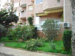 Wohnung in miete in calle Quinta Avenida, Manga del mar menor, la - 24258489
