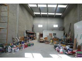 Nau industrial en lloguer Constantí - 342062204