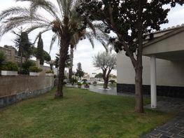 Haus in verkauf in calle Amadeu Vives, Sant Pol de Mar - 212855905