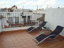 Attico en vendita en Santa Cruz en Sevilla - 368771468