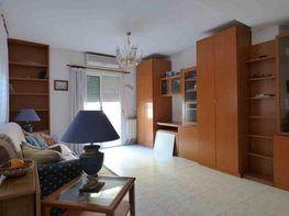 Salón - Apartamento en venta en calle Tomás Ortuño, Levante en Benidorm - 274757477