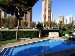 Piscina - Piso en venta en calle Ametlla del Mar, Rincon de Loix en Benidorm - 312916596