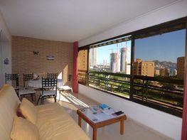Terraza - Apartamento en venta en calle Marina Alta, Poniente en Benidorm - 373180009