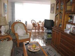 Salón - Apartamento en venta en calle Alcalde Manuel Catalan Chana, Rincon de Loix en Benidorm - 44409470
