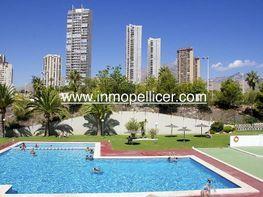 Imagen sin descripción - Apartamento en venta en Poniente en Benidorm - 352655817