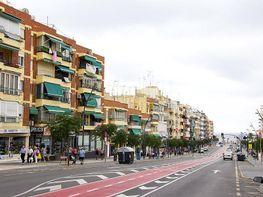 Imagen sin descripción - Apartamento en venta en Benidorm - 363571342