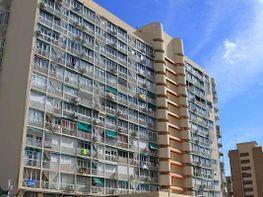Apartament en venda Benidorm - 325492314