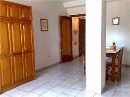 Estudi en lloguer calle Gaviota, Beiro a Granada - 151651317