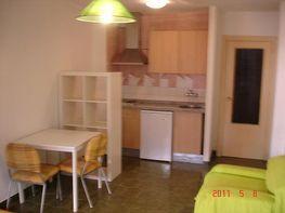 Estudio en alquiler en calle Pedro Antonio de Alarcón, Ronda en Granada - 162350877