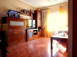 Foto - Piso en venta en calle Carolinas Altas, Carolinas Altas en Alicante/Alacant - 398010781