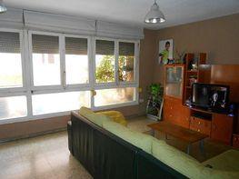 Foto - Piso en venta en calle Carolinas Bajas, Carolinas Bajas en Alicante/Alacant - 398681813