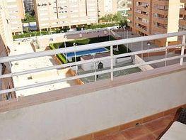 Foto - Piso en venta en calle San Gabriel, San Gabriel en Alicante/Alacant - 182015013