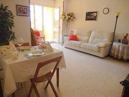 Foto - Piso en venta en calle Carolinas Altas, Carolinas Altas en Alicante/Alacant - 213506803