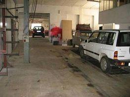 Gewerbehalle in miete in calle Jorba, Jorba - 220246035