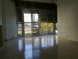 Salón - Oficina en alquiler en plaza Constitución, Jaén - 114341758