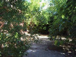 Parzelle in verkauf in carretera Santa Ana, Santa Ana in Albacete - 39164383