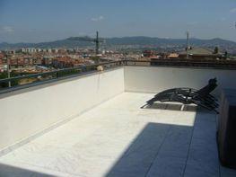 Terraza - Casa en venta en Marianao, Can Paulet en Sant Boi de Llobregat - 77085536