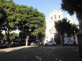 Wohnung in verkauf in calle Azucena, Barrio León in Sevilla - 379487366