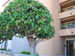 Piso en alquiler en calle Asj, Sant jordi en Torredembarra - 411615821