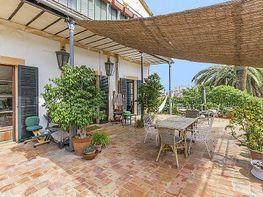 Foto - Piso en venta en calle El Terreno, El Terreno en Palma de Mallorca - 394086348