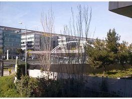 Oficina en alquiler en calle Sur del Aeropuerto de Barajas, Aeropuerto en Madrid - 355865011