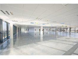 Oficina en alquiler en calle Manoteras, Sanchinarro en Madrid - 368808049