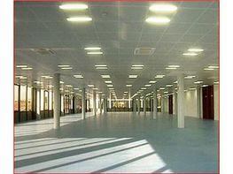 Oficina en alquiler en calle Aduana, Justicia-Chueca en Madrid - 404964662