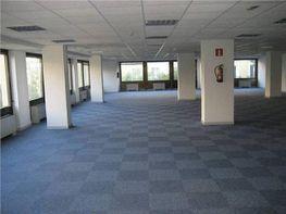 Oficina en alquiler en calle Condesa de Venadito, San Pascual en Madrid - 414973646