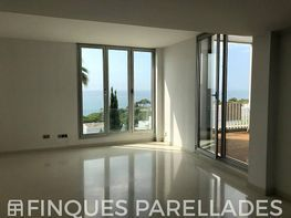 Dúplex en alquiler en Urbanitzacions del sud en Sant Pere de Ribes