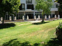 Apartament en venda urbanización Bahia Dorada, Estepona - 122229801