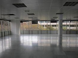 Oficina en alquiler en calle Diagonal, Les corts en Barcelona - 295506468