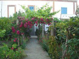 Piscina - Casa rural en alquiler de temporada en Ibiza/Eivissa - 401920778